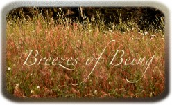 Breezes of Being