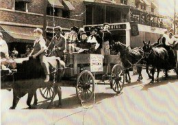 My daddy at 16 driving a team of oxen in an early Apply Festival Parade in Hendersonville, NC circa 1940=41