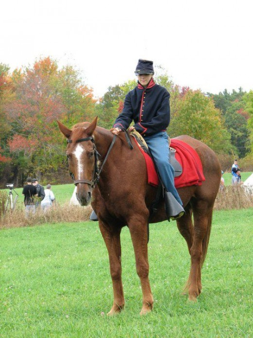 Me in Civil War period uniform Horse is Alante