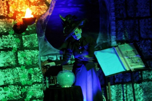 Wicked Witch of the West played by Debbie Sheppard