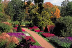 Paved Garden Paths - Beautiful Additions to Gardens