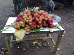 Bekasi produces kinds of fruits including Rambutans (Nephelium lappeceum).