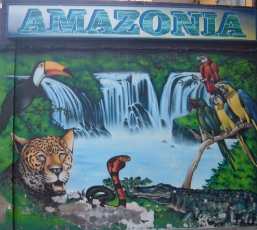 Amazonia Jungle Animals artwork in Alcala, Tenerife. Photo by Steve Andrews