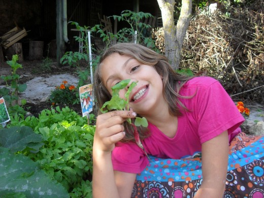 Gardening with children, The happiness of harvesting her first radish