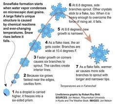 Formation of Snowflakes