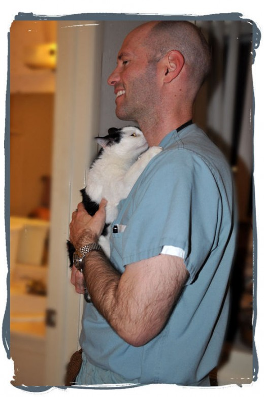 Yes, this is a single guy that loves cats.