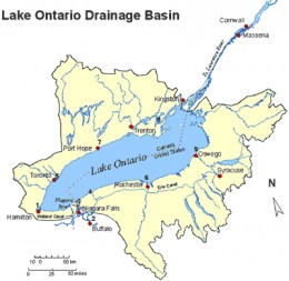 Lake Ontario, the 14th largest lake in the world, is the smallest of the Great Lakes in surface area.