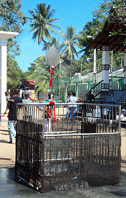 In front of Maha Devale (the place where coconuts are smashed in respect of God Kataragama).