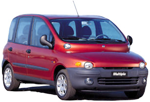 Fiat Multipla: An aborted cetacean fetus displayed at the Museum of Modern Art in New York.
