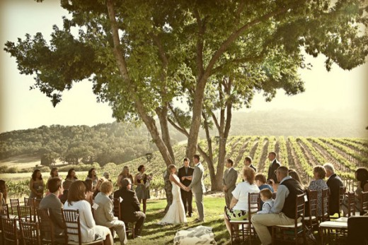 Country Wedding At A Vineyard