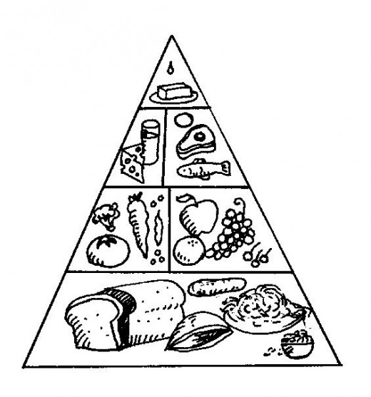 The Food Pyramid illustrates, in grapic form, the amount of our diet that should be made up of each food goup.