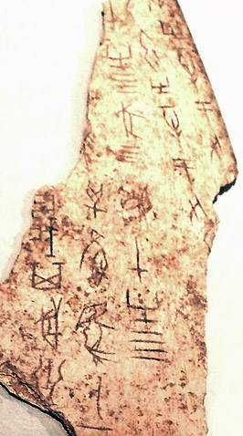 Shang Dynasty Oracle Bone script on Ox Scapula, Linden-Museum, Stuttgart, Germany, Photograph by Dr. Meierhofer.