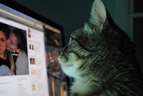 "Technology can make you ""cat""atonic. So turn off the computer every now and then."