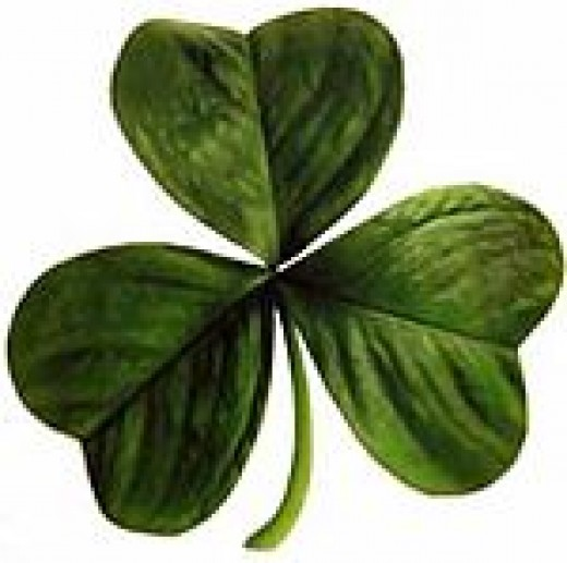 Saint Patrick's Day - Shamrock