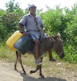 a donkey to help carry water is a luxury is some countries