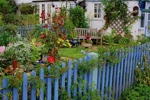 Seaside Garden, by *Susie*