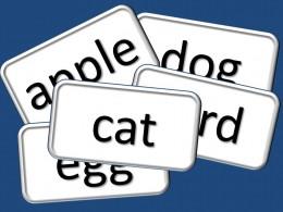 Flashcards help in language development in infants