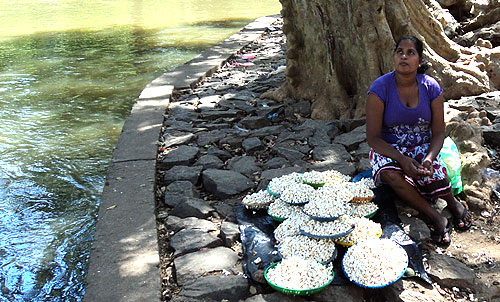 A village woman selling popcorn on the river bank.