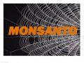 Secret Agent Orange:  A Monsanto Web of Deceit