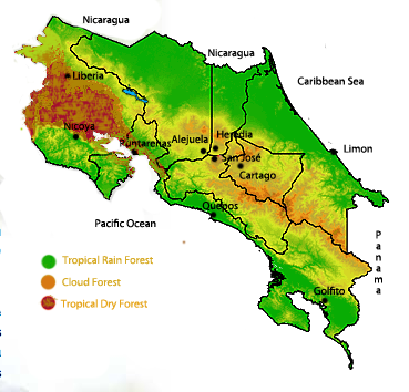 An illustration of zones that have three different types of forest types.