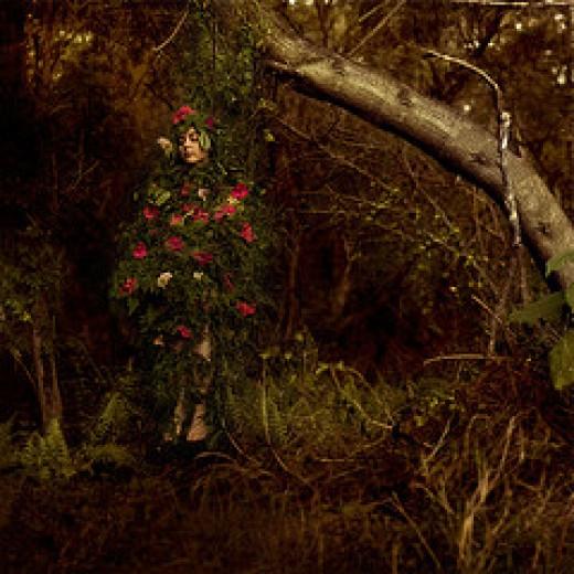Self-Preservation from Ingrid Endel Source: flickr.com