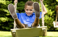 The Allure of the Family Tree Swing