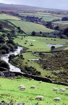 The photograph related to question #4 is courtesy of www.dartmoor-farm-accommodation.co.uk.