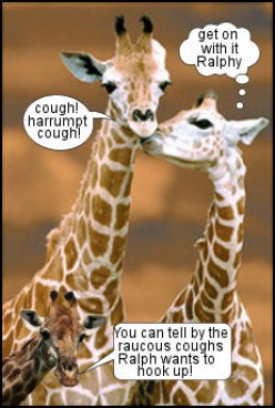 What Sounds does a Giraffe Make