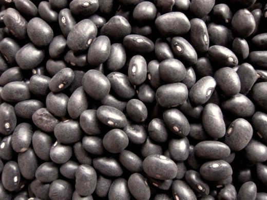 Black beans are a versatile legume used in many different cuisines.