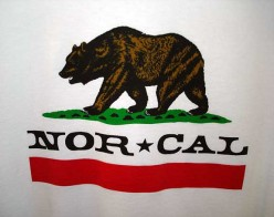 What is California's Bear Wildlife Population?