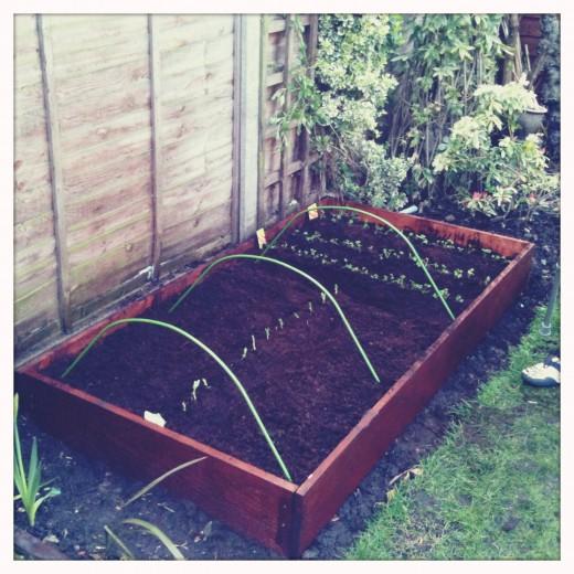 Our small vegetable box, £15.99 B&Q