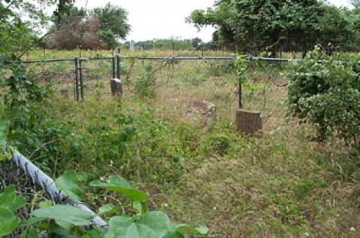 Pine Grove, Black Cemetery