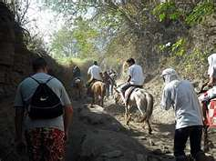 trekking by foot or horseback riding up the Taal Crater