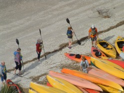 Group of tourists learning basic kayaking skills before going on a group tour of the Calibogue Sound.