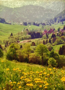 Nearing Feldberg in the Black Forest of Germany