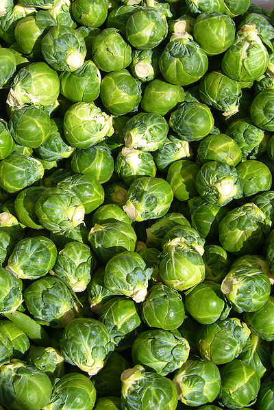 Delicious Brussel Sprouts. You can easily grow Brussels Sprouts in your home garden.