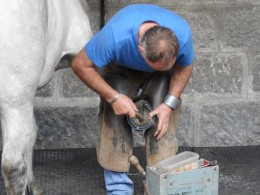 A farrier shoeing one of the horses on the Queen's estate.