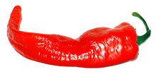 A large red cayenne pepper pod.