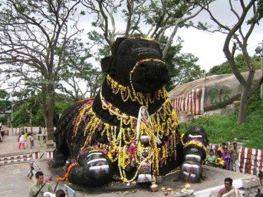 Bull temple - Bangalore