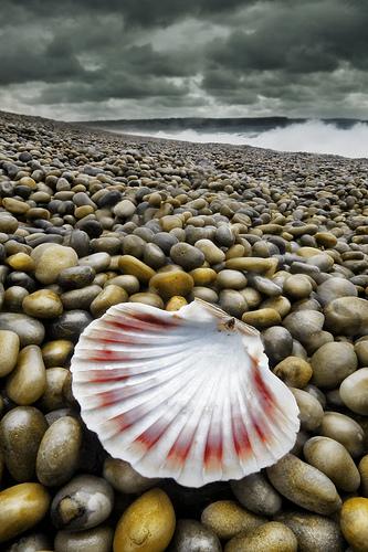 Lost Love from petervanallen Source: flickr.com