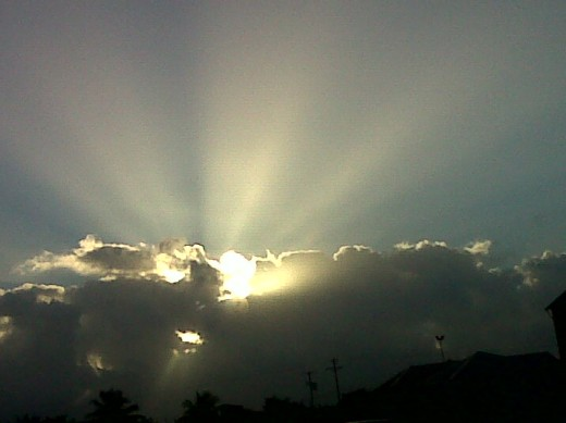 """Rays of Sunshine""  snapped this morning 24/2/2012"