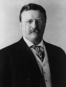 Theodore Roosevelt was a ENTP