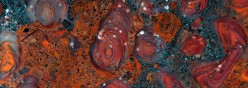 What Was The Last Universal Common Ancestor (LUCA)
