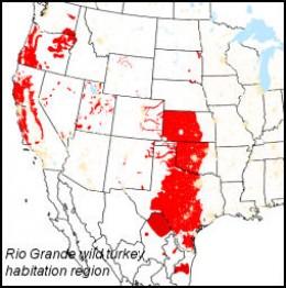 Rio Grande wild turkey habitat region - *see also composite image component citations