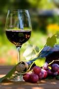 A Perfect Glass of Vino