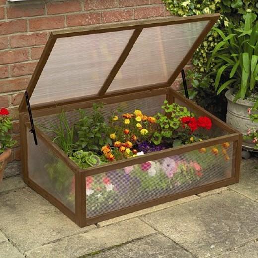 garden cold frame