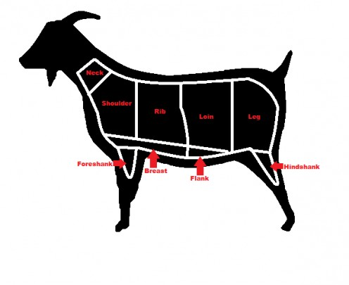 Goat meat cuts chart - photo#21