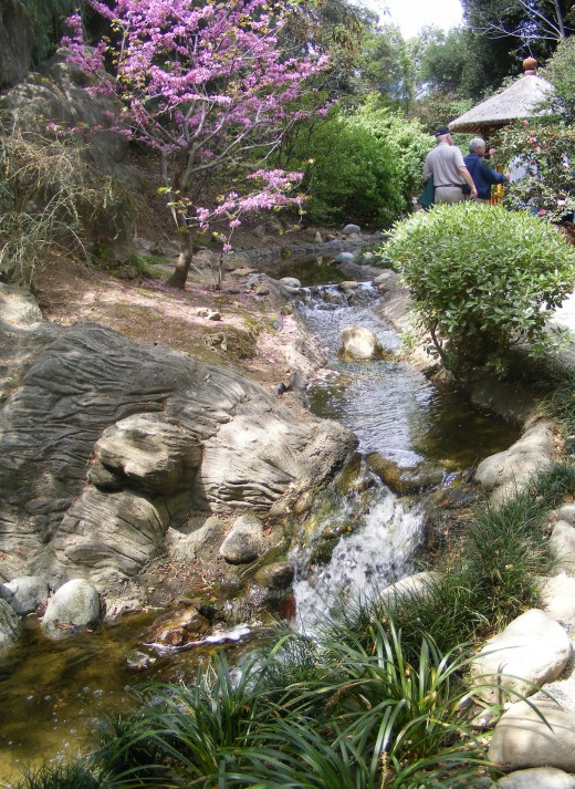 Beautiful stream at the Huntington Library.