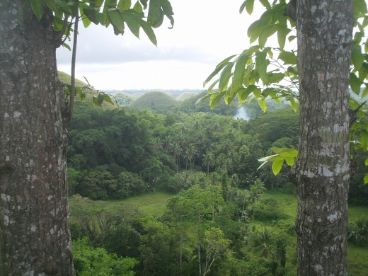 This view is taken from the Chocolate Hills Complex about 4 kilometers before the town of Carmen, Island of Bohol.