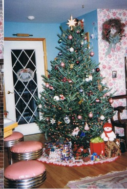 Beautiful Christmas Tree Skirts Patterns and Tutorials.  My skirt under our tree.